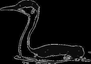 bird-30564_640