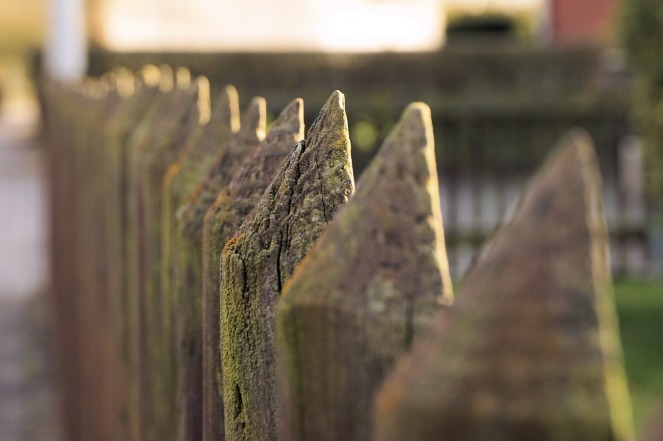 Fence posts fading into the distance