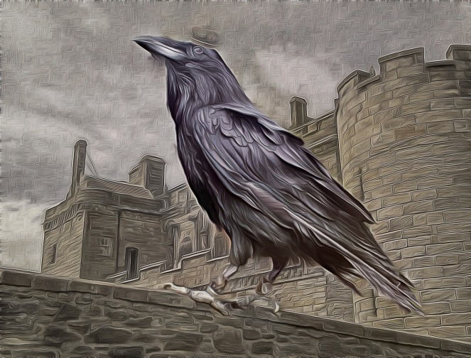 Raven - king of the crows